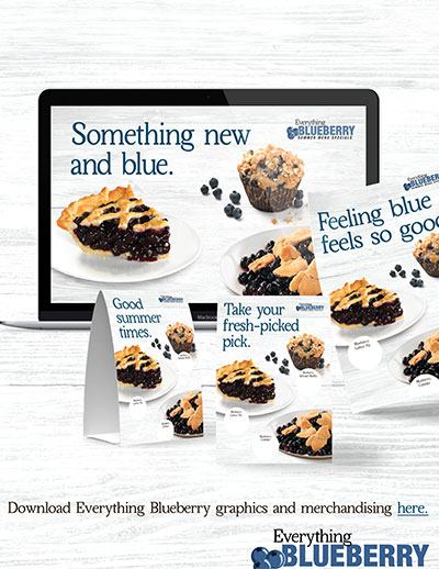 Everything Blueberry Media Pack